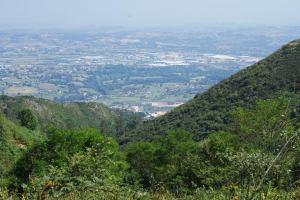 Vistas desde el Naranco